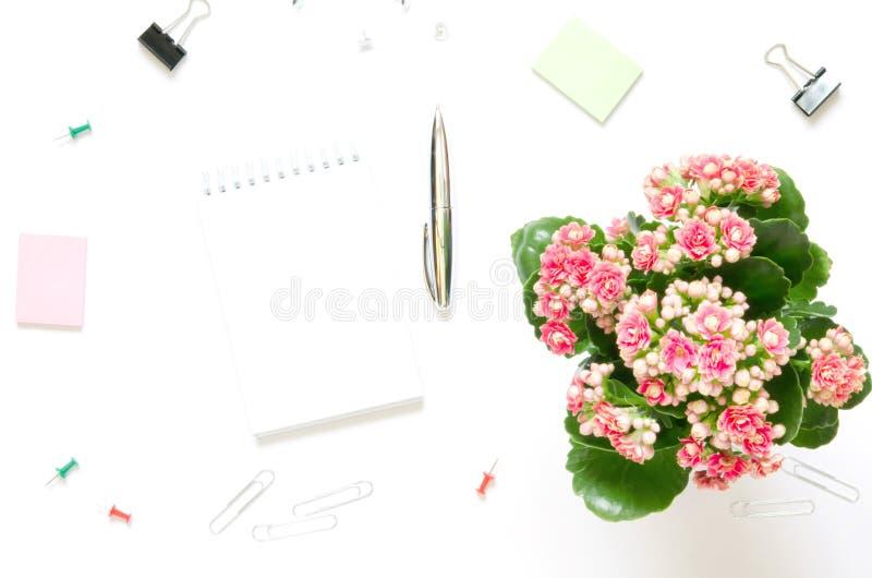 E Θηλυκός χώρος εργασίας με το ανθίζοντας φυτό Kalanchoe, σημειωματάριο, προμήθειες χαρτικών στο άσπρο υπόβαθρο στοκ εικόνες με δικαίωμα ελεύθερης χρήσης