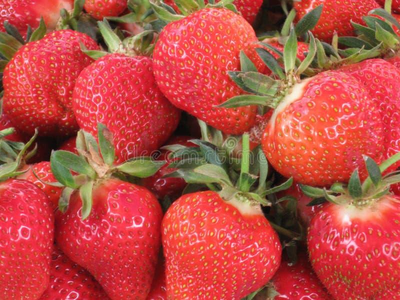 E μέρη των φραουλών κόκκινα μούρα _ πράσινο ponytail φρούτα για την πώληση Έχω τα έτη για την πώληση φρέσκα μούρα Fres στοκ φωτογραφία με δικαίωμα ελεύθερης χρήσης