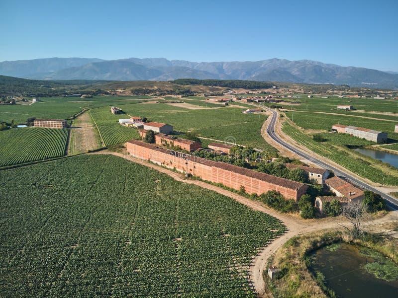 E r Στο υπόβαθρο η οροσειρά de Gredos στοκ φωτογραφία
