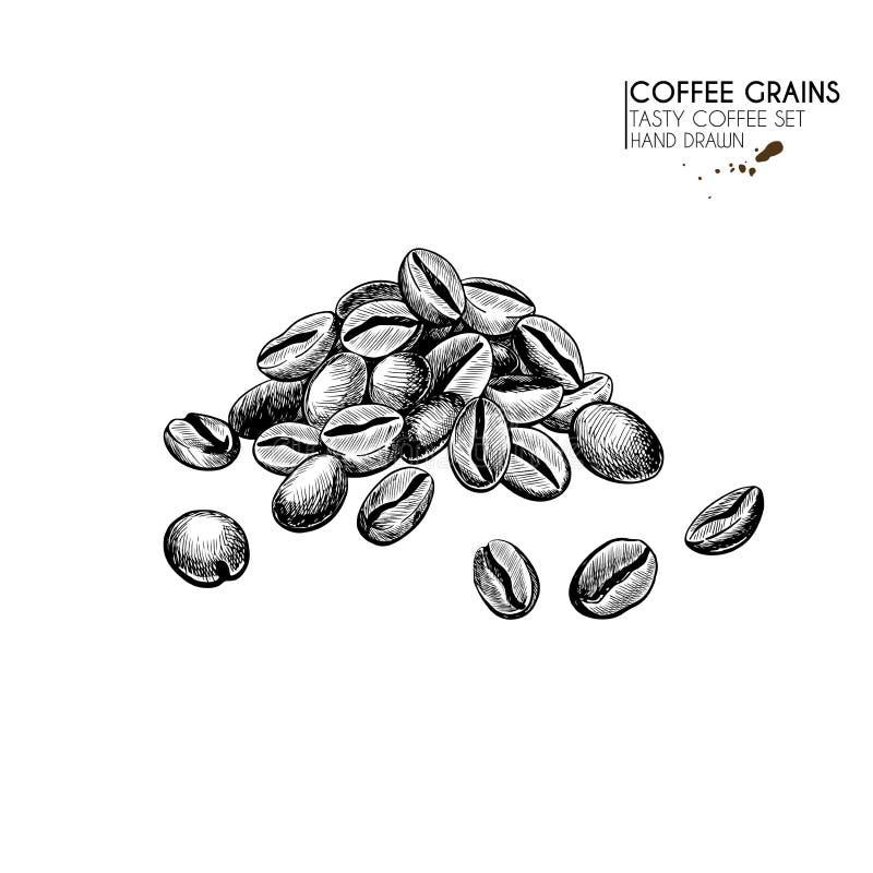 E Συρμένος χέρι σωρός φασολιών καφέ Πρόσφατα ψημένος ή ακατέργαστος σωρός σιταριού r ( απεικόνιση αποθεμάτων