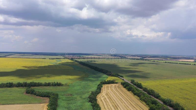 E Вы можете увидеть вид с воздуха полей пшеницы и солнцецветов стоковые фото