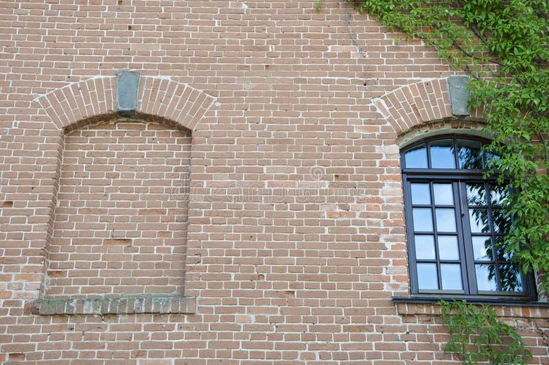 E Жилищное строительство покрытое с плющом Старый экстерьер дома с creepe стоковое изображение