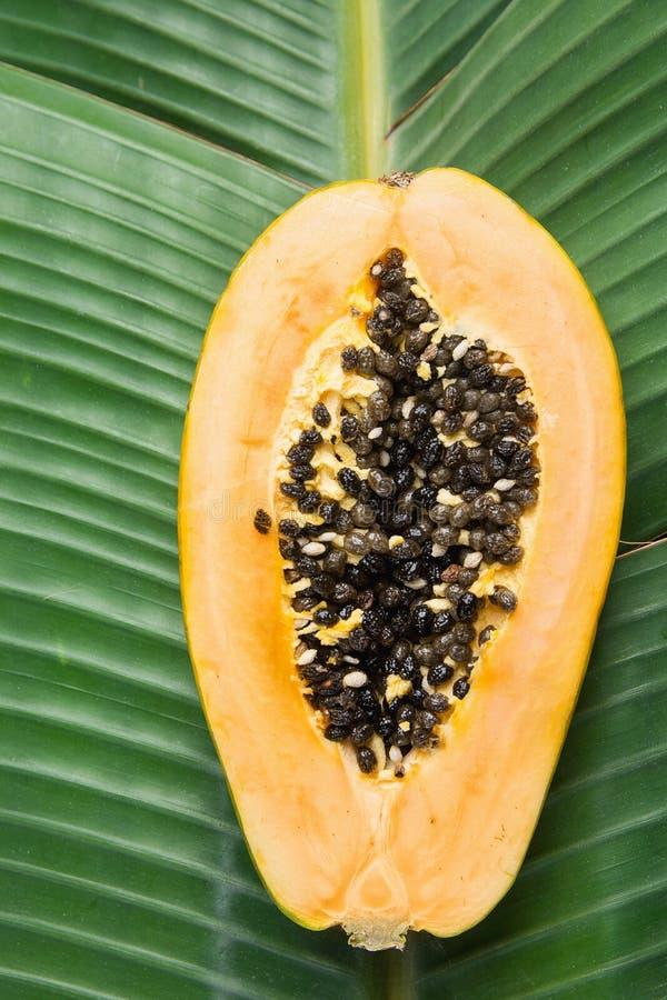 E Здоровые каникулы перемещения лета витаминов образа жизни еды стоковые изображения