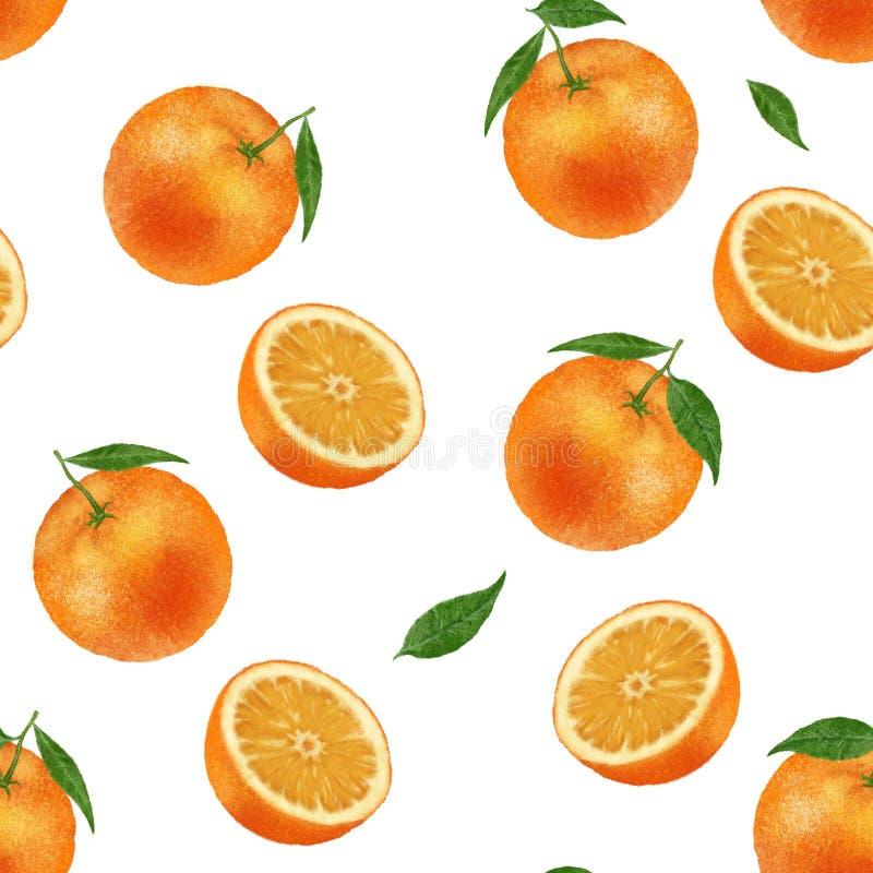 E Иллюстрация оранжевой руки плода вычерченная на предпосылке Цитрус с зелеными листьями бесплатная иллюстрация