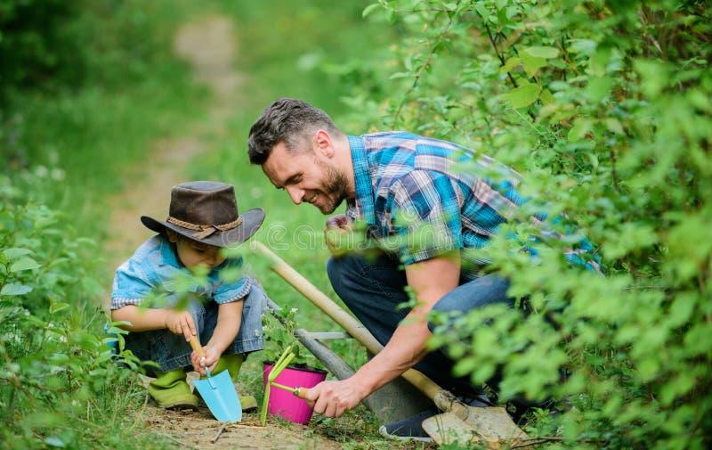 E Немногое хелпер в саде Семья фермы E Садовничая инструменты стоковая фотография