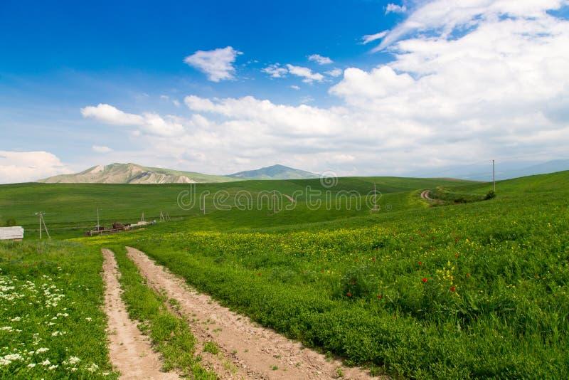 E Проселочная дорога горы среди зеленых холмов Яркая ая-зелен трава стоковые изображения