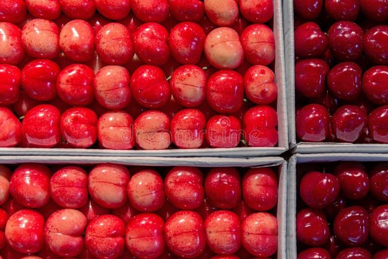 E Тип зрелой сладкой вишни в пакете который разделен в 4 клетки стоковое фото rf