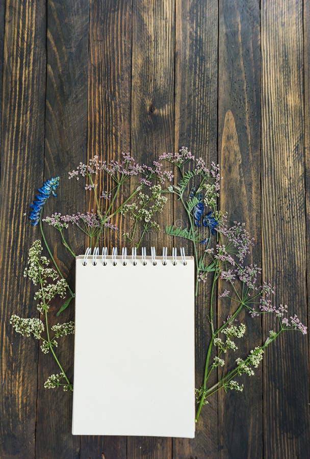 E 一棵开放笔记本和干草甸植物黑暗的木背景的 免版税库存图片