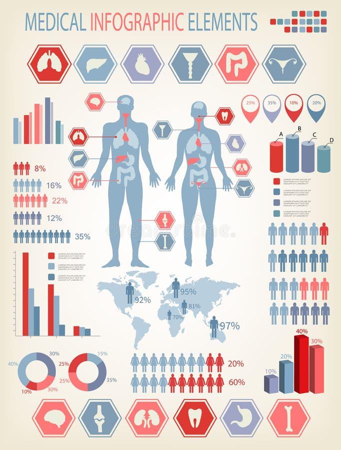 E 与内脏的人体 向量例证