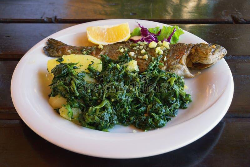 E 与叶茂盛绿色菜的烤鱼鳟鱼在白色板材 免版税图库摄影