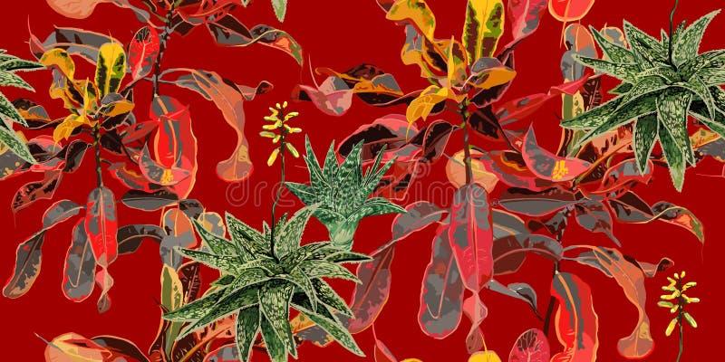 E 仙人掌、多汁植物和榕属 库存例证