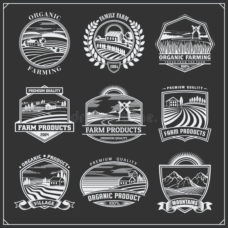 E 农厂新鲜食品标签、徽章、象征和设计元素 有机,生态和生物nat 皇族释放例证