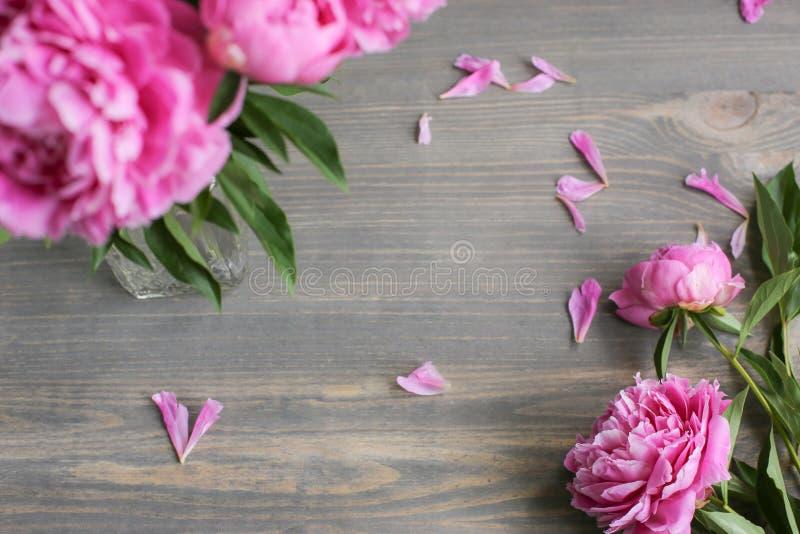 E 在木背景的桃红色牡丹花 r 免版税图库摄影