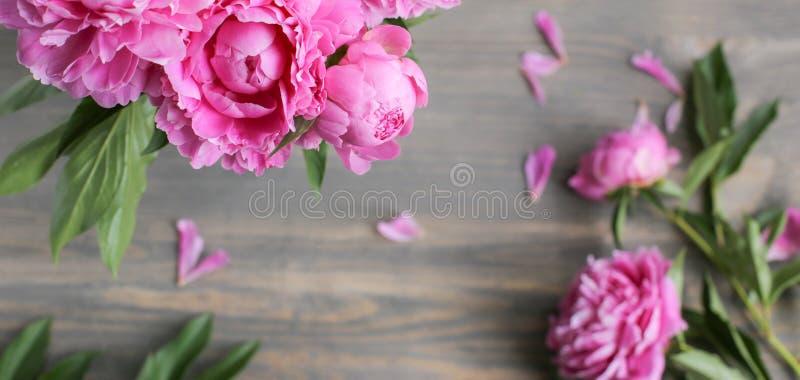 E 在木背景的桃红色牡丹花 r 免版税库存图片