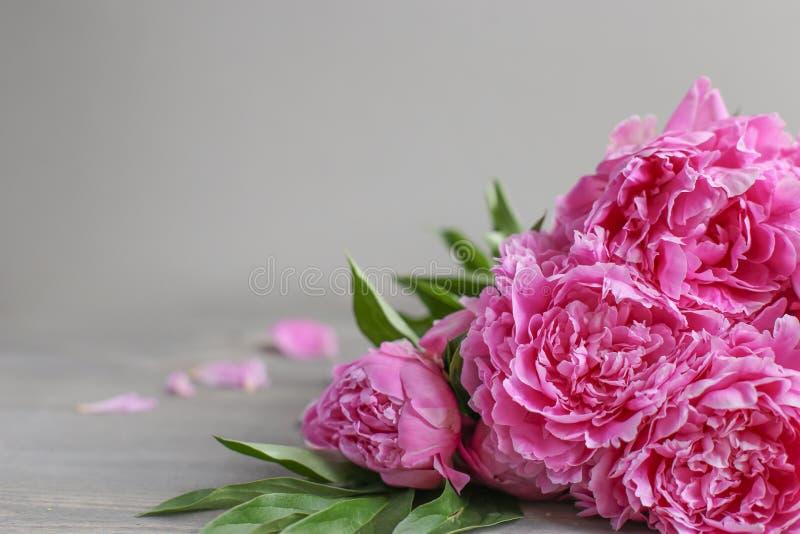 E 在木背景的桃红色牡丹花 r 库存照片