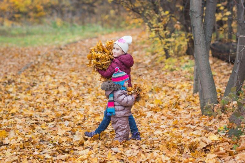 E 女孩藏品束在户外自然步行的秋天黄色叶子 免版税库存照片
