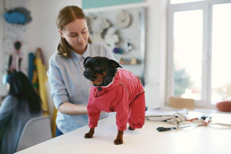 E 女性在宠物的裁缝佩带的衣服 库存图片