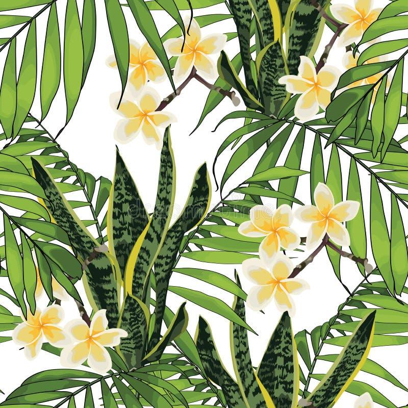 E 手拉的热带夏天背景:鲜绿色的棕榈树叶子和羽毛花 向量例证