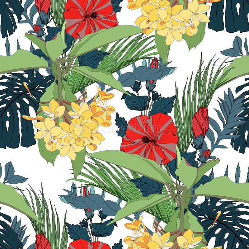 E 手拉的热带夏天背景:monstera和棕榈树叶子、羽毛和红色木槿花 库存例证
