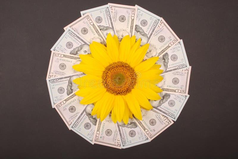 E 抽象金钱背景光栅样式重复坛场圈子 免版税库存照片