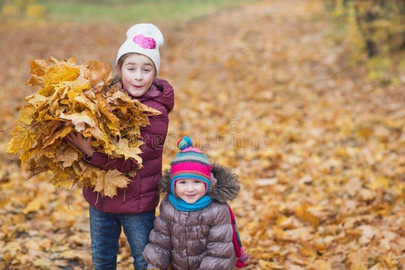 E 拿着一一抱在自然步行的秋天黄色叶子的女孩户外 免版税库存照片