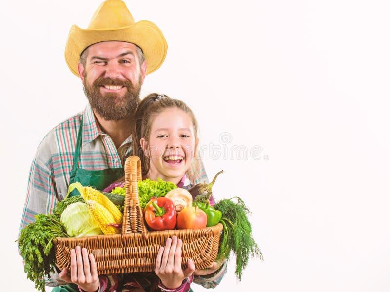E 有孩子的人有胡子的土气农夫 农夫家庭本地出产的收获父亲和女儿举行 库存照片