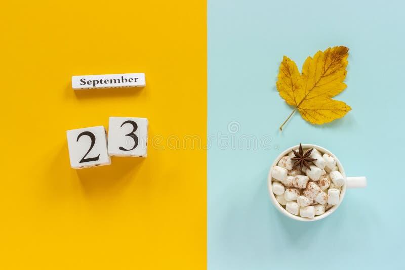E 木日历9月23日,杯子可可粉用蛋白软糖和在黄色蓝色的黄色秋叶 免版税库存照片