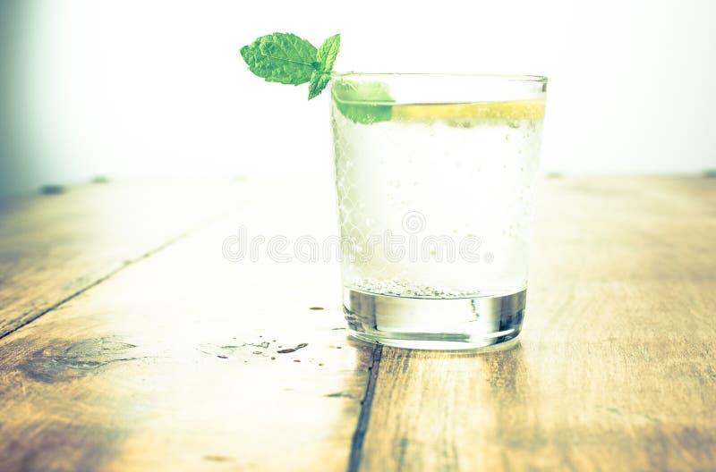 E 柑橘柠檬水用薄菏 库存图片