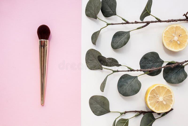 E 粉末的一把宽刷子和脸红与在桃红色背景的一支金笔与玉树和柠檬 库存照片