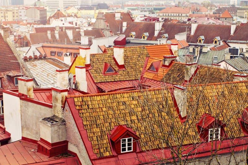 E 老镇塔林,爱沙尼亚中世纪屋顶的看法  免版税库存照片