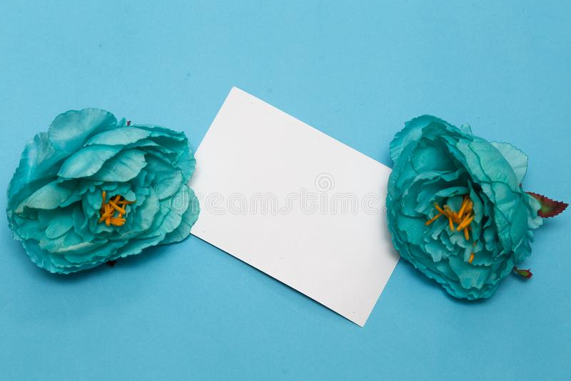 E 花,在淡蓝的背景的笔记本 免版税库存图片