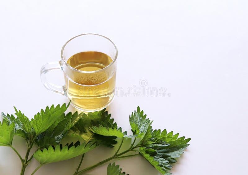 E 药用植物 的treadled 免版税库存照片