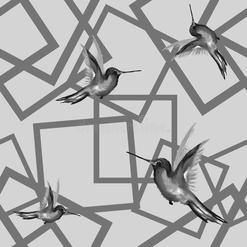 E 蜂鸟,水彩绘画 皇族释放例证