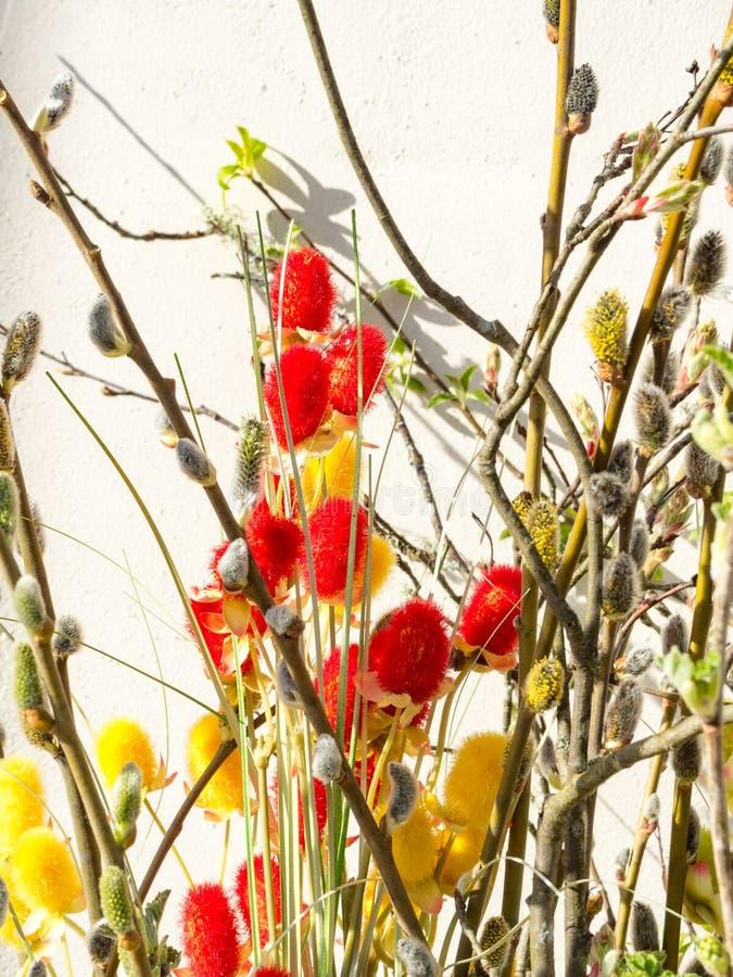 E 贺卡,背景,与褪色柳,选择聚焦的复活节装饰 免版税库存照片