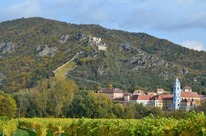 Осень на винограднике, Нижняя Австрия стоковое фото