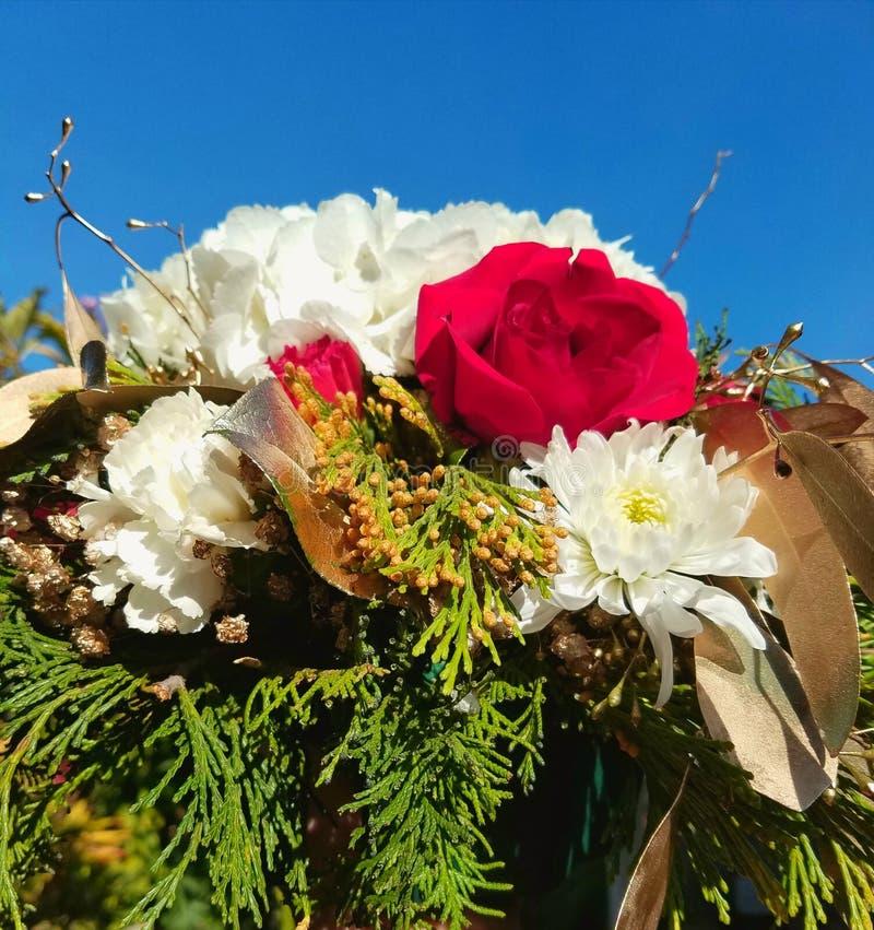 Прекрасный многоцветный букет с ветвями рождественской елки стоковые изображения