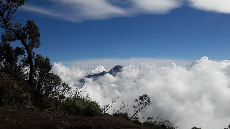 Наслаждайтесь небом стоковое фото rf