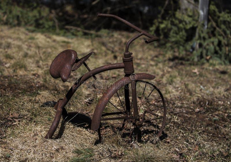 Старый старинный ржавый трехколесный велосипед с травой стоковые изображения