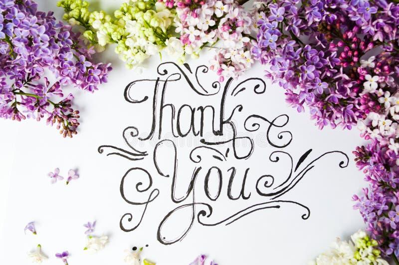 Спасибо, но с фиолетовыми лиловыми цветами. стоковые фото