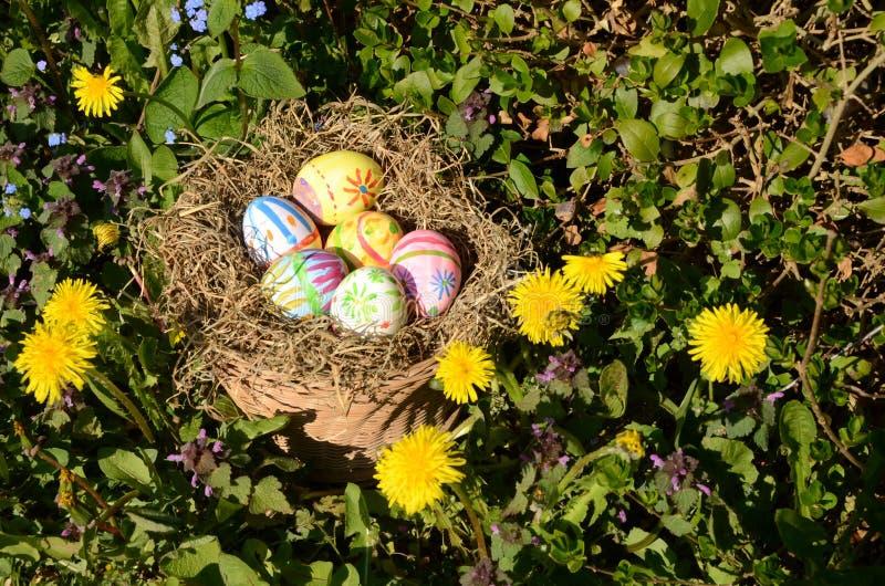巢用被绘的复活节彩蛋 免版税库存照片