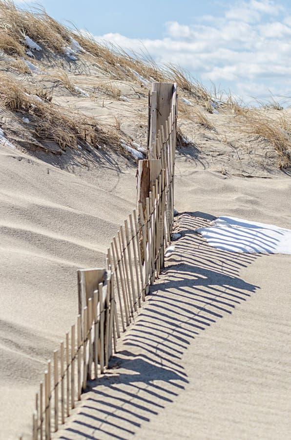 Download E foto de stock. Imagem de madeira, bacalhau, praia, areia - 65581372