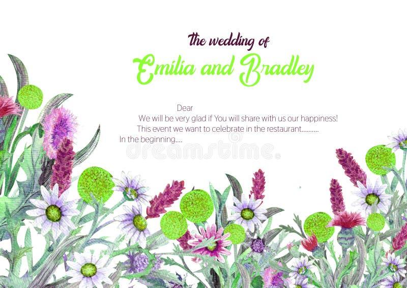 E akwarela kwiatu przygotowania Kartka z pozdrowieniami szablonu projekt tła sztandaru ptaszyn clothespin pary projekta serc ilus ilustracja wektor