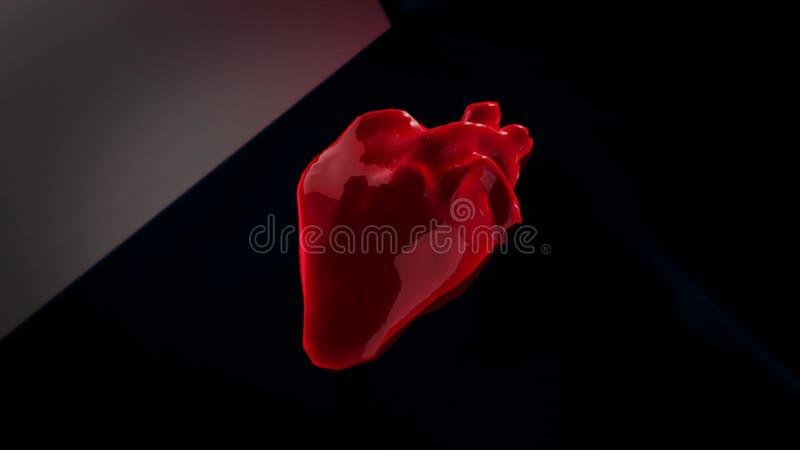 E animation Anatomie des Menschen vektor abbildung