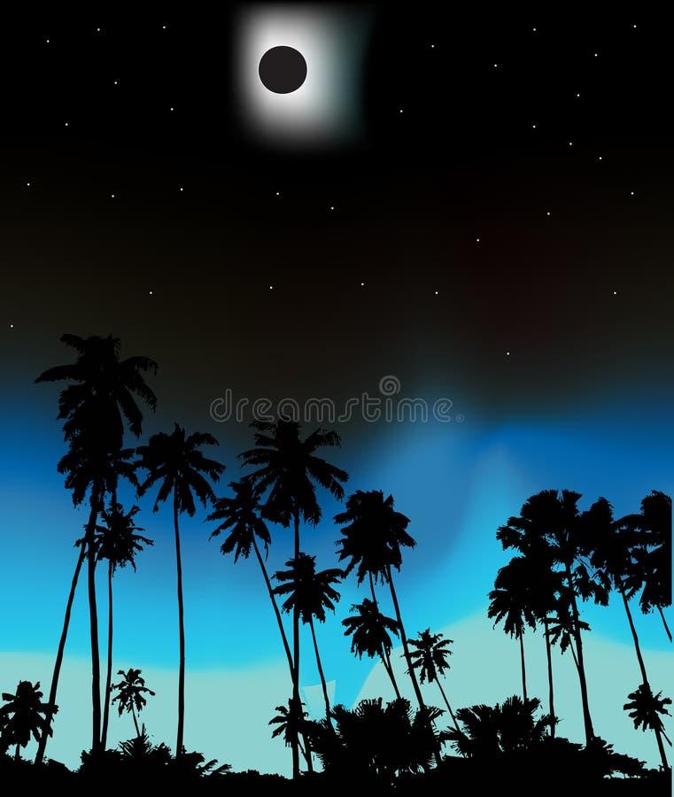 E-clips solaires tropicaux illustration stock