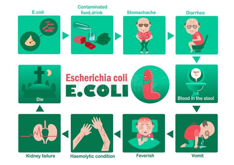e coli бесплатная иллюстрация