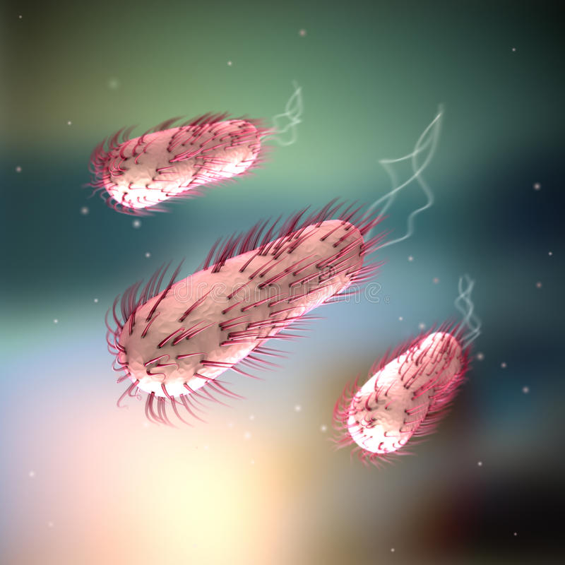 E coli - Escherichia Coli stock illustrationer