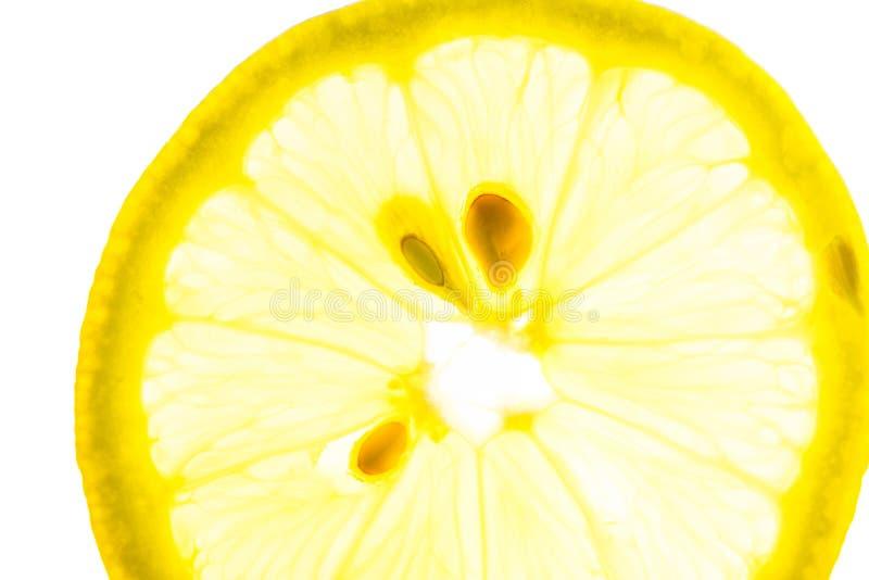 E Draufsichtebenenlage Vibrant Farbe lizenzfreies stockbild