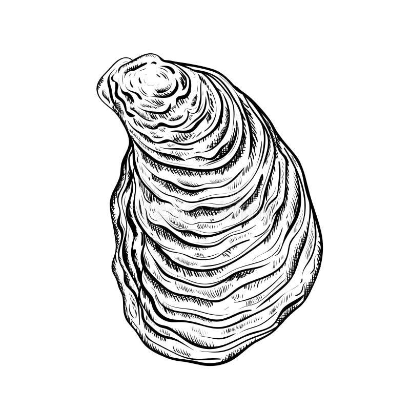 E Estilo grabado Aislado en el fondo blanco libre illustration