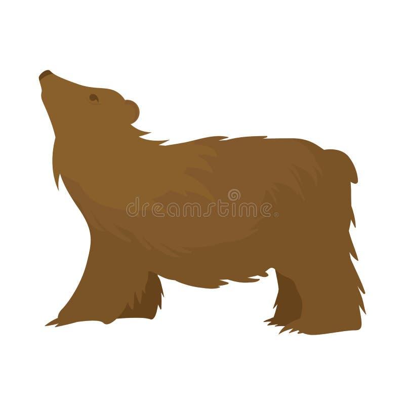 E Fije de oso y del símbolo común marrón para la web libre illustration