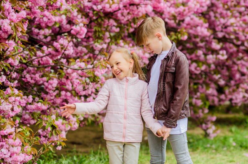 E Gelukkige jonge geitjes Romantische datum in park De lentetijd om in liefde te vallen Jonge geitjes in liefde roze kers stock afbeelding